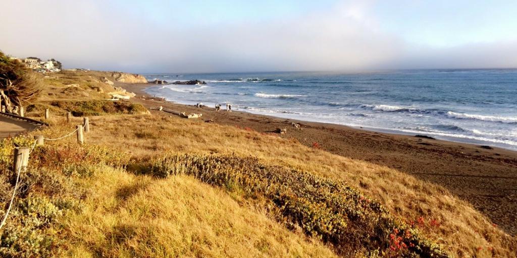 Cambria and its Exquisite Coast