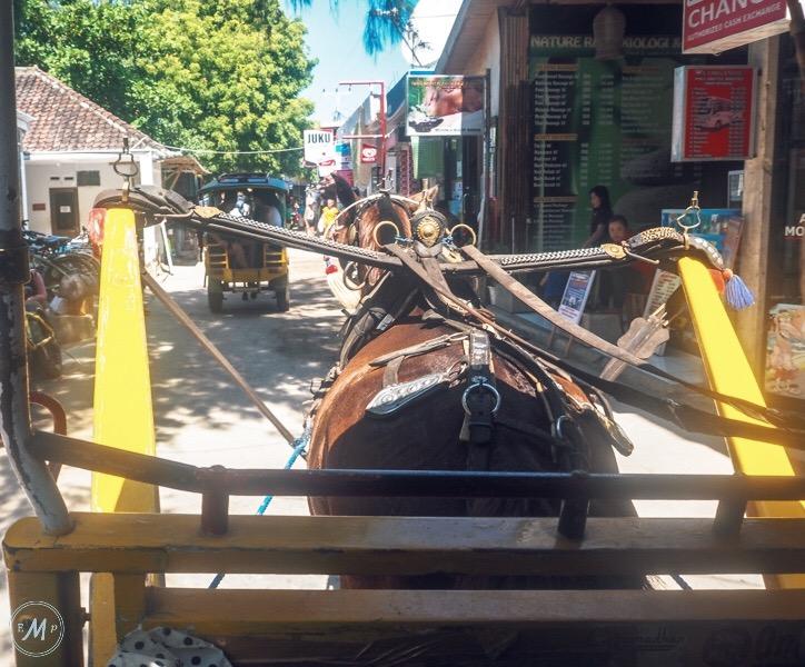 Gili Trawangan Itinerary Cidomo