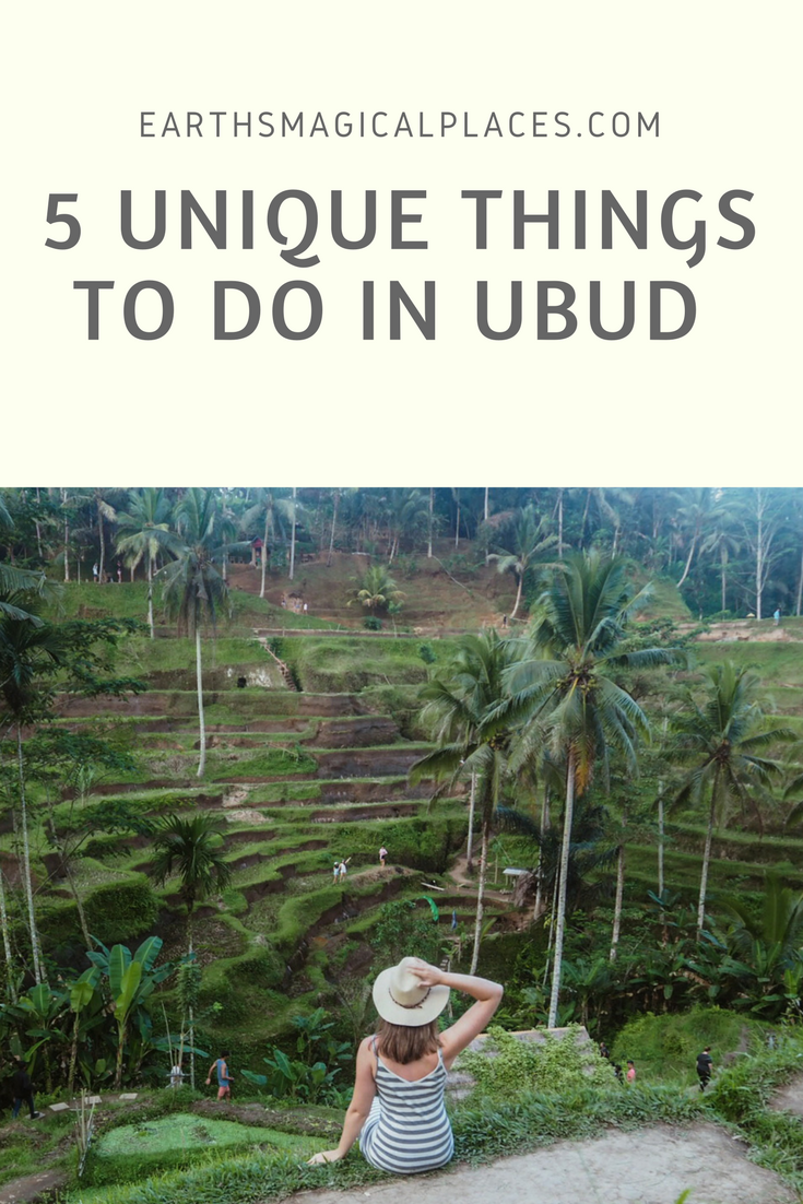 Ubud Bali Indonesia is one tropical destination that you simply NEED to travel too! However, google things to do and the only thing that comes up is the monkey forest. So if your looking for more unique things to do then look no further than this post! It contains tips to all the best beaches, restaurant, waterfalls and so much more! #travel #bali #indonesia
