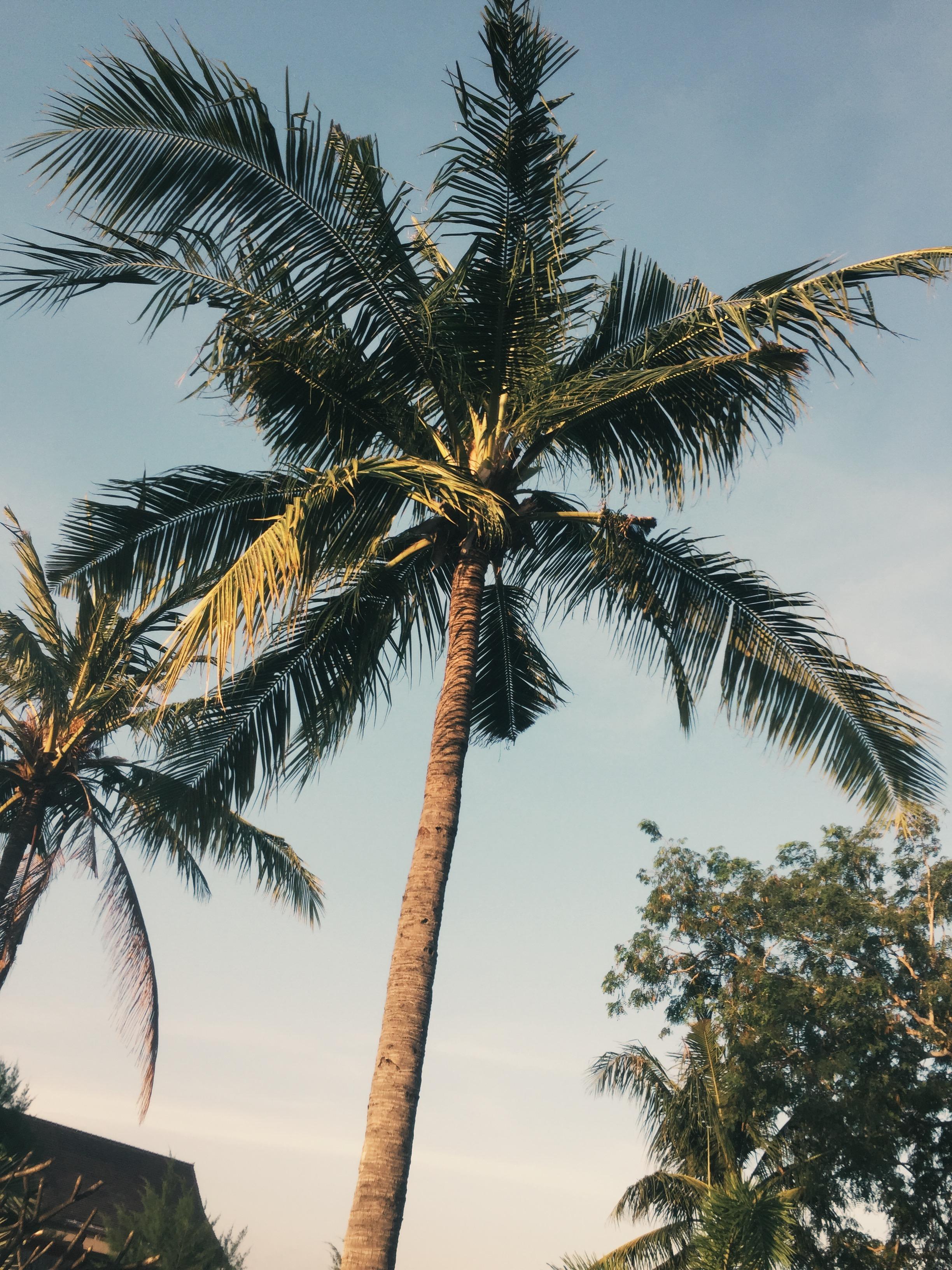 Bali Two Week Itinerary