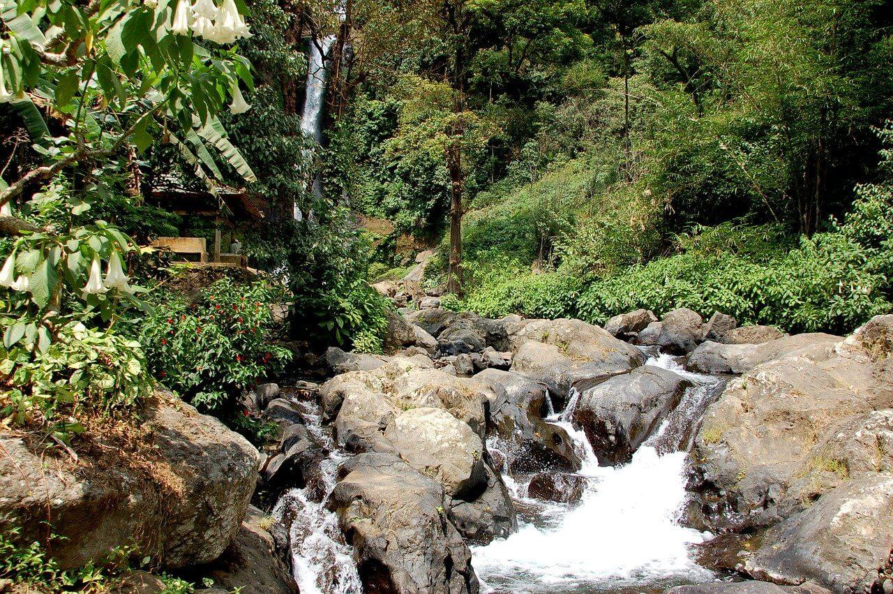 Things to see in Ubud waterfalls