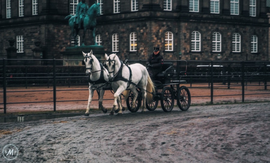 copenhagen palace - Christiansborg palace, Royal Stables