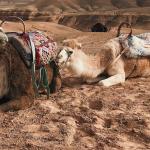 Agafay Desert 2